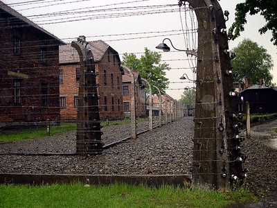 When I arrived at Auschwitz there were just 3 barracks, but the enormous space around which was bordered with electric wire and barbed wire, promised that this emptiness would, undoubtedly, quickly be filled up with construction of one kind or another. And that's exactly what happened. Every day transports arrived at the camp, full of people, who had been brought from every corner of Europe. The procedure of emptying out a transport once it got to Auschwitz was always exactly the same. The heavy doors of the rail cars were opened up on both sides, S. S. brutes would stand with their sticks and their whips and they'd really give it to the unlucky victims who came out of the cars. Tens of dead people were taken out of the cars. These were the victims of the journey who had endured days upon days inside hermetically sealed rail cars without water or anything to eat, without air, in a frightfully crowded space. The arrival at Auschwitz was marked by orders to stand up in lines while a doctor from the S. S. carried out his selection. With a little gesture of his hand, he indicated who went straight to the gas chamber and crematorium, and who would remain alive for the time being, though in the hideous conditions at Auschwitz.  Frightful scenes were played out when children were torn away from their parents, even babies who were nursing were torn from their mother's breasts. Some of the mothers fought like lionesses against this brutality, but their struggle always ended up in a quick death. How much brutal sadism the Germans displayed in the murder of little babies!?  The part of the transport that was directed to the left was sent to the gas chamber. It appeared to be a barracks covered with tarpaper, with two tiny little windows. During my arrival at Auschwitz there was just one gas chamber. But with time the death industry developed to such a scale that 5 gas chambers were able to take care of thousands of people on a daily basis. There was also a great increase in
